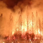 New Law Coming: PGE to Pass Fire Costs to Ratepayers ?